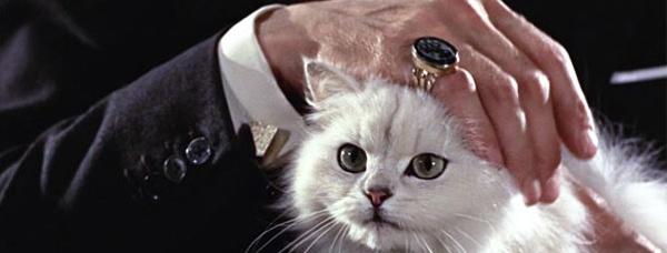 007 cat