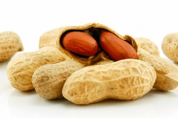 peanut-allergy-590x393