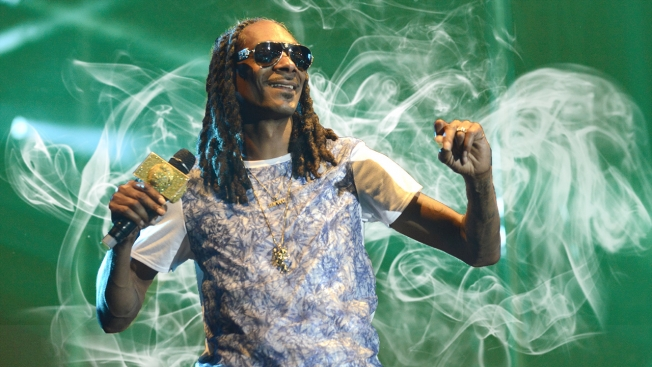 snoop-weed-hed-2015